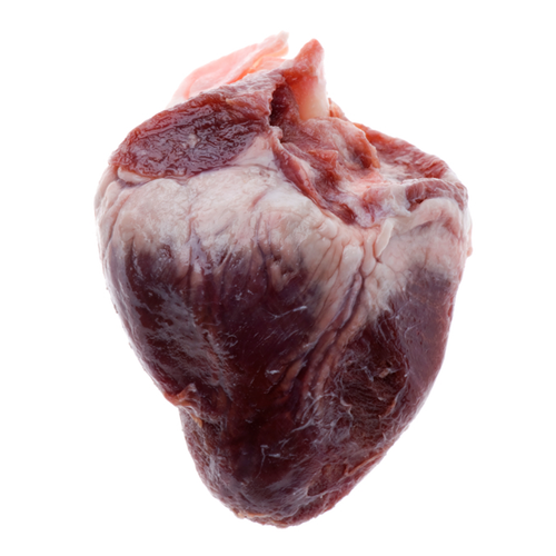 Heart - All Animals